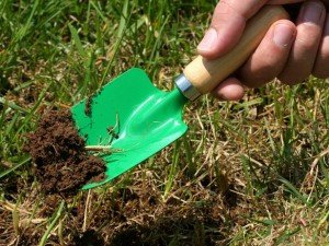RX-iStock-115875193_Water_Lawn_Dig_Into_Soil_h_lg