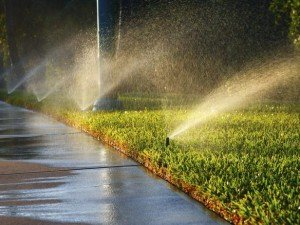RX-iStock-181586432_Water_Lawn_Walkway_Irrigation_h_lg