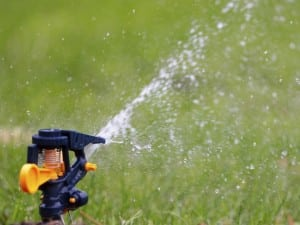 RX-iStock-187558829_Water_Lawn_Sprinkler_h_lg