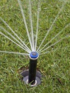 TS-178740439-sprinkler-head-grass_v_lg