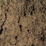 regular_soil_lg